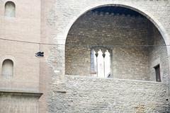 Gothic Quarter (dogfaceboy) Tags: barcelona spain market laboqueria mercat 2014