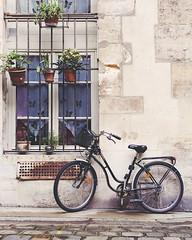 Le Velo (IrenaS) Tags: white paris window bike gray cobblestone flowerpots p14207