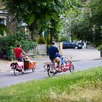 Clissold Park, June 2014