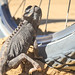 How to climb wheel spokes (2/3)