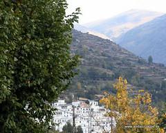 Granada Trevélez - Paisajes GPS 36.995000, -3.270000 (Elgipiese) Tags: españa andalucía spain andalucia granada andalusia trevelez trevélez paisajesdeandalucia paisajesdetrevélez