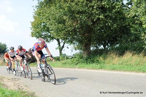 Geel Oosterlo  (125)