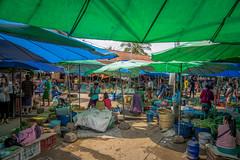 ViryaKalaTravelBlog-LP-61.jpg (viryakala) Tags: travel southeastasia laos laungprabang motorbiketrip copyrightcreativecommons viryakalacom viryakalatravelblog bydinasupino
