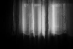(YOUANDMEORUS) Tags: leica monochrome themorningafter leitz flickrfriday tetsuyamiyamori