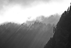 Morning Rays in the Columbia Gorge (Orbmiser) Tags: columbiagorge memaloosestatepark 55200vr d200 nikon oregon portland winaappletv largerthanlife landscape bw shadows