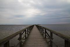 Long-Jetty (Perzec) Tags: ocean sea water skåne long sweden jetty vatten bryggan scania hav öresund bjärred långa