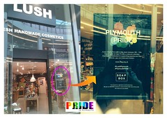 "lush-pride-2014 • <a style=""font-size:0.8em;"" href=""http://www.flickr.com/photos/66700933@N06/14812842505/"" target=""_blank"">View on Flickr</a>"