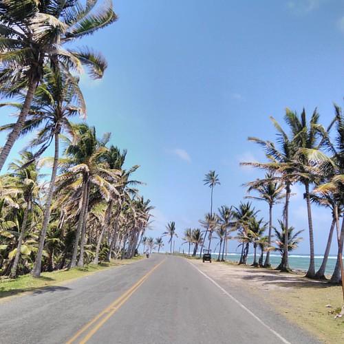 RoadTrip a la isla #DonOsoTrip #DonOsoResidence #sanandresisla #beach #paraiso