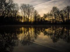 P2260224 (turbok) Tags: bäume landschaft pflanze pflanzenmitwasser sonne sonnenaufgang spiegelung teich wasser c kurt krimberger