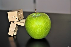 haut comme une pomme (karine_cattier) Tags: 7daysofshooting brightcolors geometrysunday danbo vert