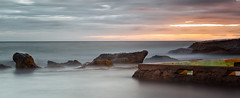 Early start (tara.bowen) Tags: whalebeach sunrise sydney nsw australia beach longexposure rocks rockpool tidalpool canon lee