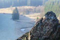 20170409_bieley_0028.jpg (elmayimbe) Tags: schwalmbachtal monschau deutschland landschaft europa gewässer eifel fels bieley perlenbach bach kalterherberg perlenbachtal