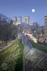 York (M Hillier) Tags: york yorkshire city cityscape skyline landscape urban minster cathedral church religion christianity castle wall walls ruin medieval daffodils daffodil yellow flowers spring season castellation castellations bank banks evening dusk bluehour clear sky skies moon fullmoon night nighttime photography outdoors portrait uk unitedkingdom gb greatbritain composition foreground leadingline leadinglines leadinline leadinlines longexposure cartrails lighttrails trees tree building buildings gothic architecture vernacular starburst stone structure beautiful calm serene peaceful