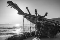 Restos del temporal, Getares. (Tamariita Gómez) Tags: mar playa getares estrecho temporal mejillonera