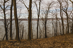 Mississippi River (Lake Pepin) (Tony Webster) Tags: frontenac frontenacstatepark lakepepin minnesota mississippiriver march spring statepark trees winter unitedstates us