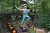 (katie perkins :]) Tags: newyorkbotanicalgarden new york botanical garden bronx newyork gardens plants plant landmark nature scarecrow scary halloween spooky pumpkin pumpkins field crow crows bird birds tree trees woods forest autumn fall outdoor