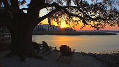 Sunset Viewing (Thanks for over 2 million views!!) Tags: beach sand chairs scenic water trees hiltonheadisland southcarolina sunset chadsparkesphotography disneyshiltonheadislandresort