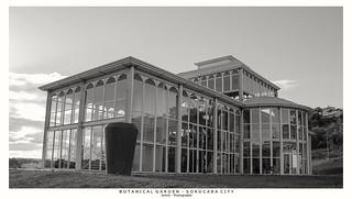 Glass House III