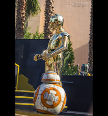 C-3PO & BB-8 - Disney's Hollywood Studios (J.L. Ramsaur Photography) Tags: jlrphotography nikond7200 nikon d7200 photography photo lakebuenavistafl centralflorida orangecounty florida 2016 engineerswithcameras hollywoodstudios disney'shollywoodstudios photographyforgod thesouth southernphotography screamofthephotographer ibeauty jlramsaurphotography photograph pic waltdisneyworld disney disneyworld starwarsdroids c3po bb8 happiestplaceonearth wheredreamscometrue magical tennesseephotographer imagineering disneycharacters waltdisneyworldresort disneyimagineering starwars droids astromech engineeringasart ofandbyengineers engineeringisart engineering moviecharacters starwarscharacters c3pobb8 bobafett starwarsphotography bountyhunterbobafett bountyhunter