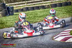 _3KM0420 HD 1-2 (Sprocket Photography) Tags: uk daytona whiltonmill gpkseries gileshedley gileshedleytheaviators marigoldsoldharlow dog tabletennis etta batts passmoreshouse toddbrook ryehousekartraceway rhpk ginetta club2000 sheningtonkartseries karting motorsports gokart prokart cadet redlodgekarting harlow essex