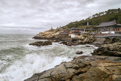 Haedong Yonggungsa (Bill Thoo) Tags: haedongyonggungsa haedongyonggungsatemple busan temple korea southkorea republicofkorea sea rocks waves clouds landscape monument architecture historical ocean scenic travel 해동용궁사 부산 sony a7rii samyang 14mm