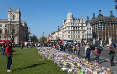 Parliament Square (The Crewe Chronicler) Tags: parliament housesofparliament parliamentsquare palaceofwestminster westminster london