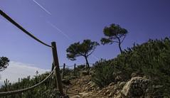 IMG_4597 (J.Gargallo) Tags: cielo cieloazul oropesa castellón comunidadvalenciana españa eos eos450d canon canon450d canonefs18200 450d outdoor sky bluesky