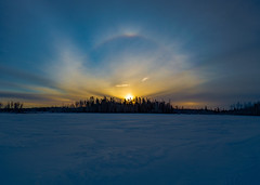 Sunrise Halo Irishtown Nature Park (James P. Mann) Tags: sundog sun dog halo irishtown nature park reservoir ice frozen sunrise