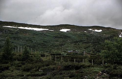 "Norwegen 1998 (032) Hardangervidda • <a style=""font-size:0.8em;"" href=""http://www.flickr.com/photos/69570948@N04/33722867905/"" target=""_blank"">View on Flickr</a>"