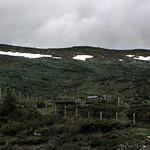 Norwegen 1998 (032) Hardangervidda thumbnail