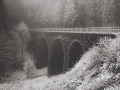 second day of January (JíťaUtlänning) Tags: blackandwhite bridge snow frost winter czechrepublic czech cesko viaduct monochrome