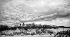 Clouds over the Dunes (mswan777) Tags: sand dune tree cloud sky warren dunes bridgman michigan outdoor nature monochrome black white ansel landscape tall scenic nikon d5100 sigma 1020mm park
