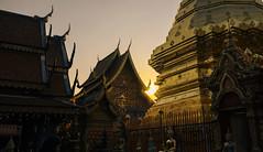 chiangmaitemples-11 (jesudeezy) Tags: chiangmai thailand travel traveling travelphotography seasia southeastasia natgeo natgeotravel lonelyplanet sonya7ii sony sonyimages sonyalpha sigma sigma35mmart 35mm temple temples