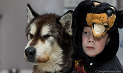 Say cheese (Derek.R.G) Tags: dog malamute family love life happy shy canon eos