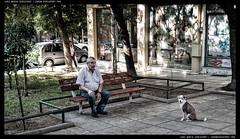 EB_7 (Lewoke) Tags: europeanblues travel travelphotography greece thessaloniki journalism photojournalism street streetphotography nikond750 macedoniagreece makedonia timeless macedonian macédoine μακεδονια people