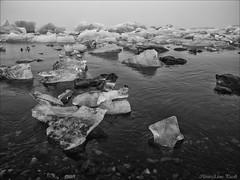 Jökulsárlón beach (Elanor82) Tags: canon eos 5d mark iii mrk3 mk3 2470 usm is iceland islanda island jökulsárlón beach lagoon laguna spiaggia iceberg ghiaccio ice bianco nero bw black white natura nature priroda