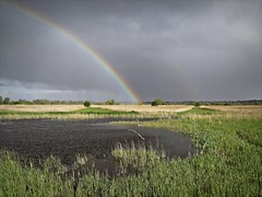 Rainbow Spotting (mr_snipsnap) Tags: rspb strumpshaw norfolk hide bird weather nature sky water rainbow