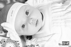 Photoshoot (Datenshiro) Tags: newbie newborn bnw black white blackandwhite monochrome photoshoot toodler portrait