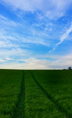 Pathway to the Sky (paulfarrington46) Tags: field walk hss