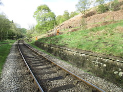 Cleared retaining wall near the Grange 10May14