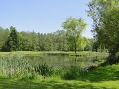 Golf course (Joop van Meer) Tags: golfcourse 2014 broechem gr12 bossensteen