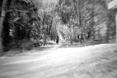 Run wild (archonline) Tags: park wild blackandwhite forest run photowalk chase lighttrails 1855mm zoomburst bpw