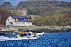 Anglesey Boat Trips (Seawake) Tags: bridge beaumaris boattrip menai caernarfon anglesey menaistrait puffinisland menaibridge britanniabridge seawake