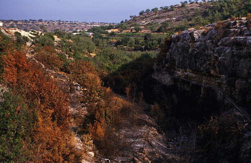 "239Zypern Troodos Saittas Reservoir • <a style=""font-size:0.8em;"" href=""http://www.flickr.com/photos/69570948@N04/14106389524/"" target=""_blank"">View on Flickr</a>"