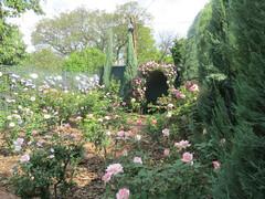 Garden of Ronnie & Bev Napier