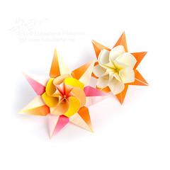 Lily Queen (_Ekaterina) Tags: flowers orange yellow paper stars star origami modular paperfolding origamipaper folding modularorigami origamistar origamistars unitorigami оригами origamimodulare модульноеоригами lukashevaekaterina lukasheva ekaterinalukasheva бумажный екатериналукашева