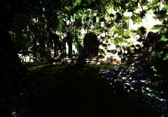 The Palace (LoneSolitarian) Tags: life light shadow art nature beauty dark landscape photography photo 3d scenery gimp romance sl fantasy secondlife virtual second faire serene sim ff firestorm relayforlife windlight 2014 fantasyfaire palaceoftears