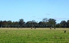 405 Culcairn-Holbrook Road, Morven NSW
