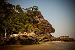 Bako National park (paulpaulpauly) Tags: park travel beach face monkey national sarawak borneo kuching bako proboscis