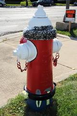 Hardware Man (completed) (Martin Pinnau) Tags: art hydrant illinois geneva firehydrant acehardware artonfire
